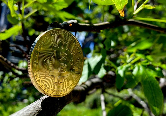 A visual representation of Bitcoin cryptocurrency. Picture: Edward Smith/Getty Images