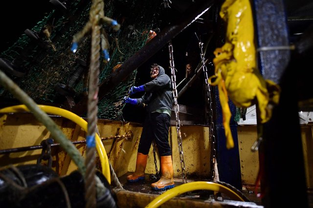 Fishing boat trawlerman Nick Hampshire prepares the net of the stern trawler 'Nicola Anne' for the first trawl of the day. Picture: Ben Stansall/AFP via Getty Images