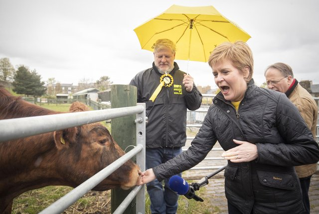 Edinburgh Central candidate Angus Robertson, pictured here campaigning this week with Nicola Sturgeon, have an interview to a German media outlet.