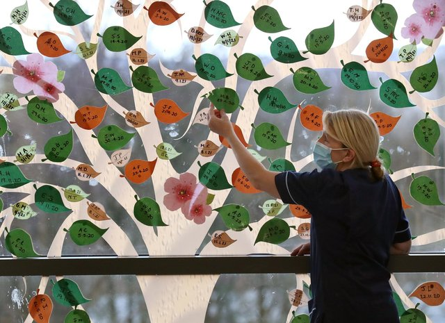 Senior charge nurse Rosario Walshe beside a Remembrance Tree mural that has been installed as a backdrop on one of the full-length windows in the ward. Picture: Andrew Milligan/PA Wire