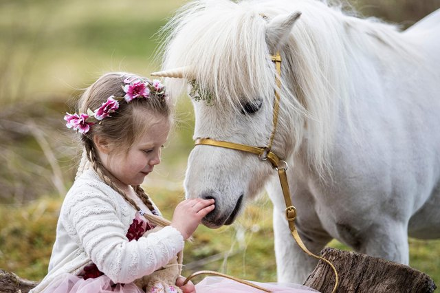 Emily Bell (4) meets Pumpkin the Unicorn (Miniature Shetland Pony) at the Unicorn Experience in West Lothian