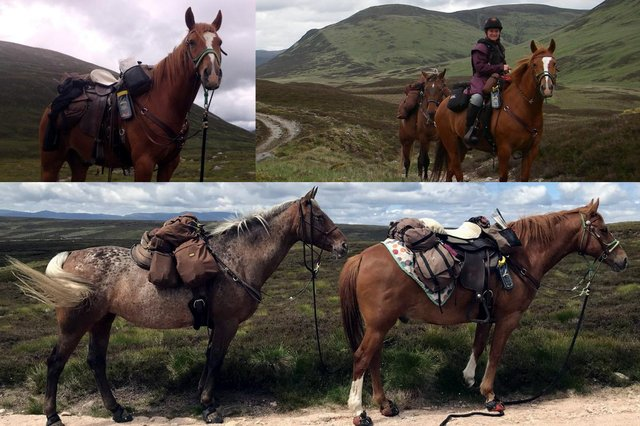 Claire and her horses have spent the last decade exploring Scotland's Highlands together picture: Claire Alldritt