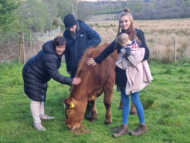 Krissy Gray gets to know Bullby as he is delivered by Charlotte Smith and Steven Khan.
